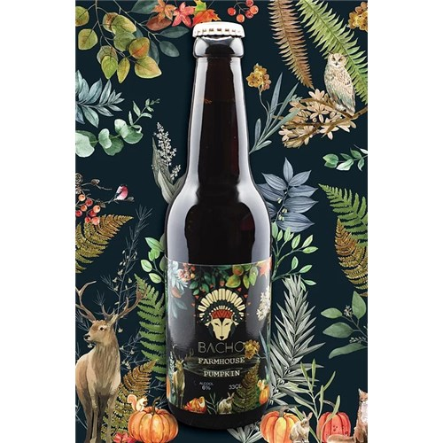 Pumpkin - Bière Automnale - Bacho Brewery 8° 33 cl